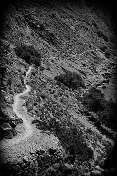 A long path by Spyros Papaspyropoulos