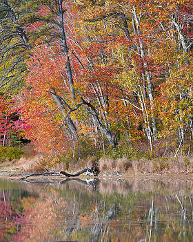 A Lovely Day At Echo Lake by Wayne Letsch