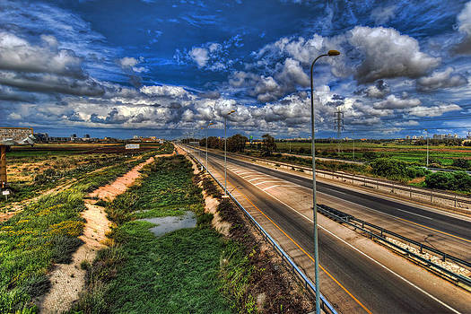 a majestic springtime in Israel by Ron Shoshani