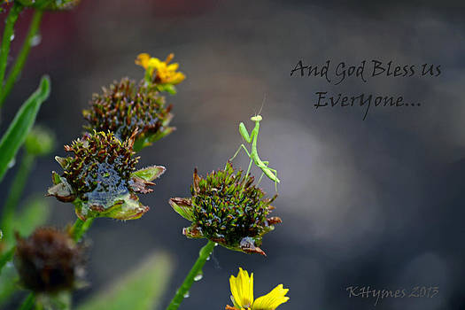 A Mantis Prayer by Kim Hymes