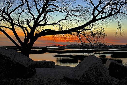 A Mid Winter's Dusk by Lisa Comperry
