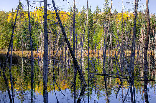 A moment for reflection. by Rob Huntley