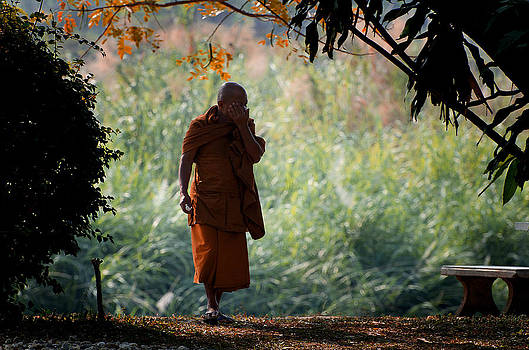 A Monk's Contemplation by Duane Bigsby