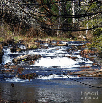 A Mountain Stream by Eva Thomas