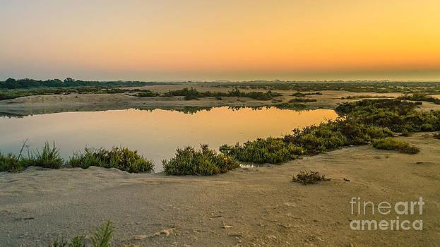 A new dawn by Girish Veetil