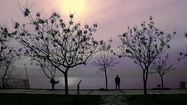 A new day by Kazim Yurekli