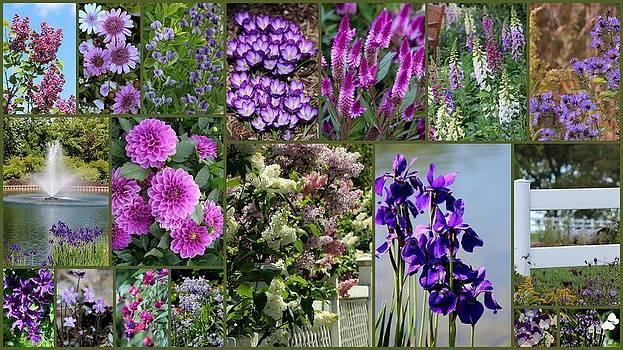 Rosanne Jordan - A Passion for Purple Flowers