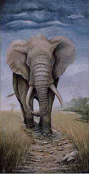 A PATH WELL TRAVELLED-African Elephant by Patricia Mansell