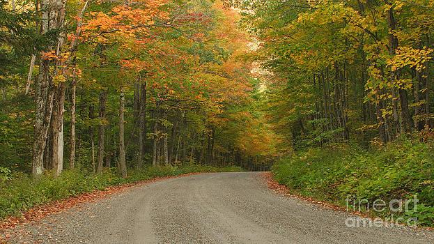 Charles Kozierok - A Peaceful Road
