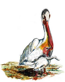 Ellen Miffitt - A Pelican and Chick
