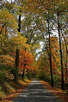 A Perfect Autumn Day by DJ Florek