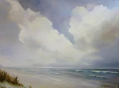 A Perfect Day by Carol Thornton