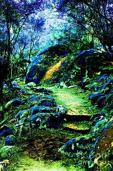 A place of Faeries and Dreams by Blair Stuart