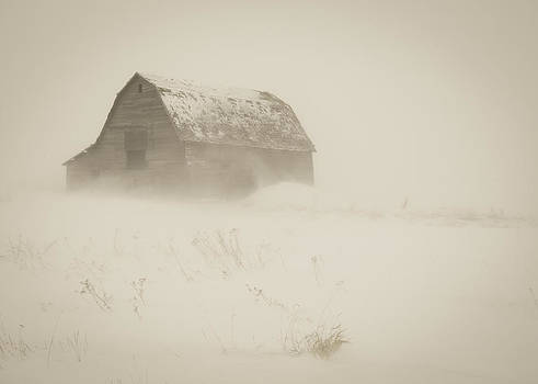 A Prarie Winter by Gerald Murray Photography
