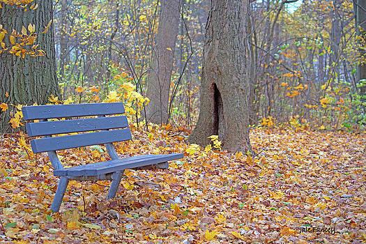 A Quiet Retreat by Jale Fancey