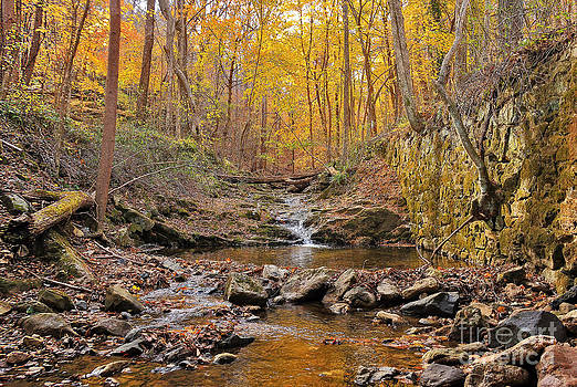A Quiet Stream Off The Beaten Path by SCB Captures