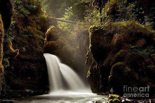 A Ray of Light by Chris Heitstuman