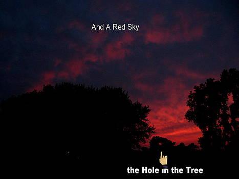 A Red Sky  by Lele Pennington