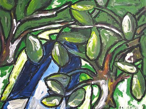 A River Runs Through It by John Maione Jr