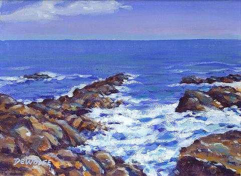 A Rocky Coast by Richard De Wolfe