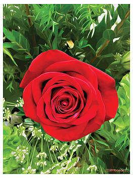 A Rose by Ed Hernandez