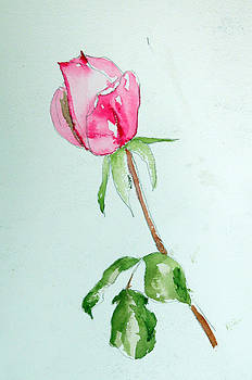 A Rose for You by Randy Ross