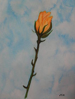 A Rose by Ginny Youngblood