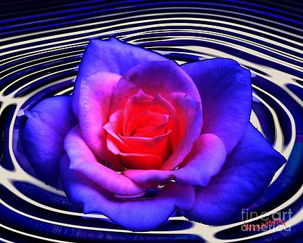 A Rose Is A Rose by Bobby Hammerstone