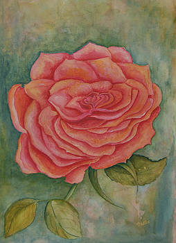 A Rose is a Rose by Vallee Johnson