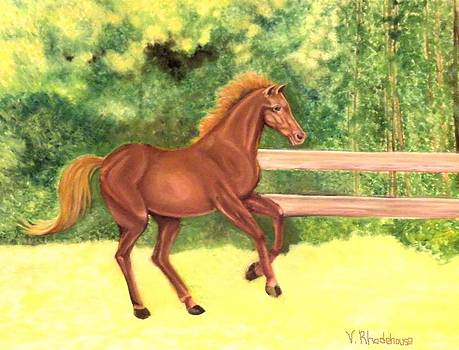 A Running Horse by Victoria Rhodehouse