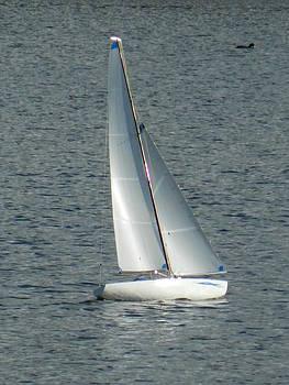 Nicki Bennett - A Sailing