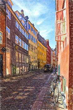 A Scandinavian Street by Angela A Stanton
