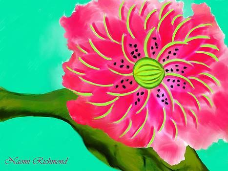 Naomi Richmond - A Slice of Watermelon Blossom