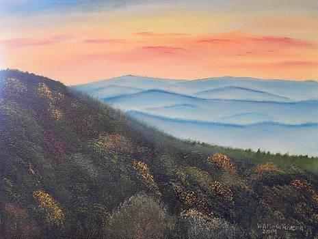 A Smokey Mountains Cliche by William McCutcheon