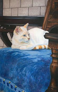 A Soft Spot by Sandi Howell