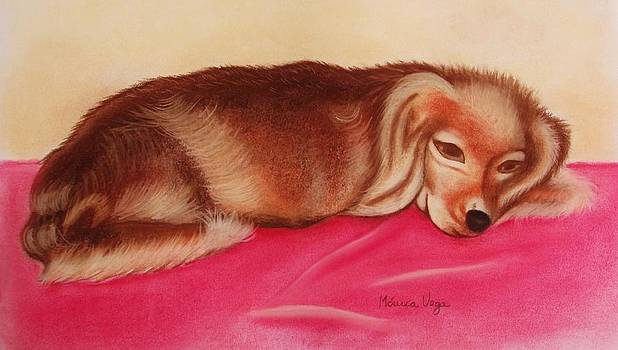 A Spaniel's Nap by Monica  Vega