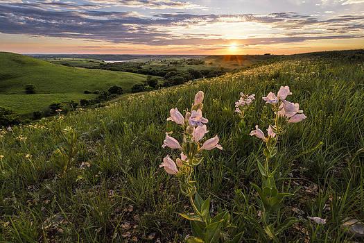 Scott Bean - A Spring Sunset in the Flint Hills