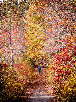 A Stroll Along Ramapo Lake by Jim DeLillo