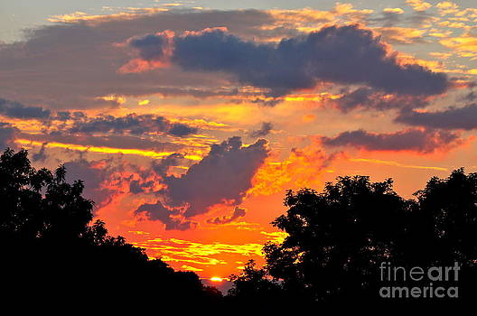 A Summer Sunset by Jay Nodianos