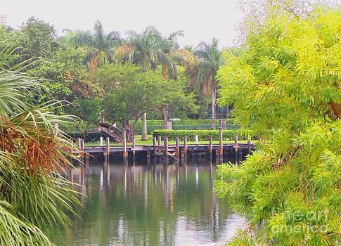 A Glistening Lake by Debb Starr
