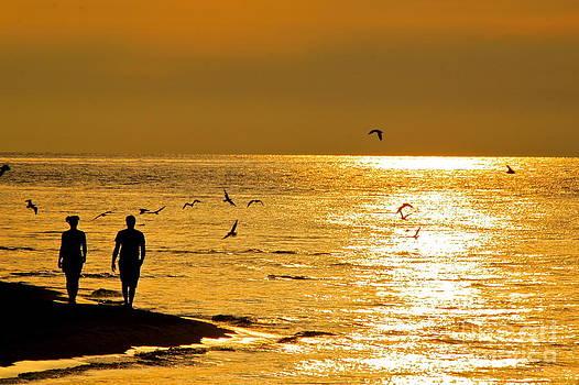 A Sunset Walk by Jay Nodianos