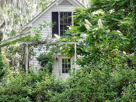 A Swell Side Entrance with Oakleaf Hydrangea by Patricia Greer