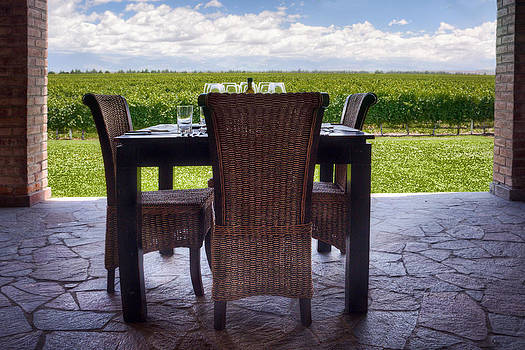 A Table With A View Mendoza by Diane Dugas