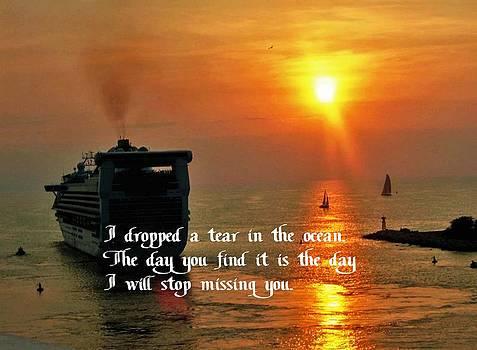 Gary Wonning - A tear in the Ocean