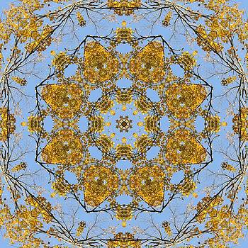 Valerie Kirkwood - A Touch of Gold Kaleidoscope