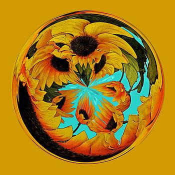 A Touch of Van Gogh by Liz Mackney