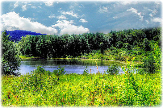 A Tranquil View by Chanda Yoder