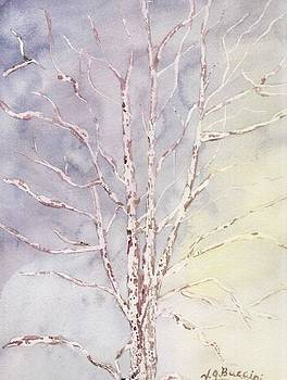 A Tree in Winter by Vickie G Buccini