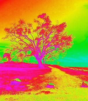 A tree of a different color by Barb Montanye Meseroll