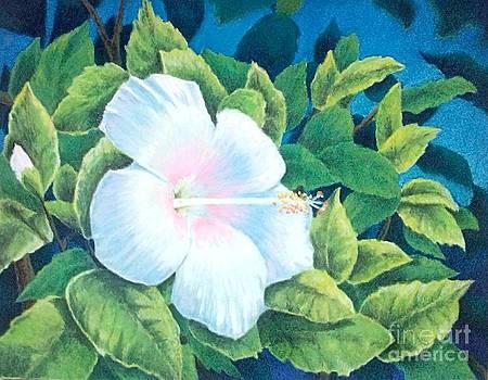 A Tropical Beauty by Ace Robst Jr